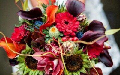 Nuotakos puokštė žiemą – kokias gėles pasirinkti?
